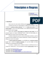 Princípios e regras.pdf