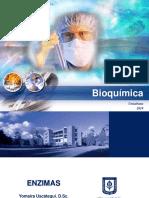 Bioquímica - Enzimas