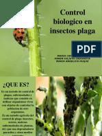 control biológico en plagas