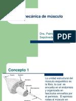 11 Biomecánica Del Músculo