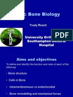 Basic Bone Biology. Presentation by Trudy Roach