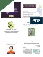 Aromaterapia - Uma Abordagem Sistematica e Multidisciplinar Na Estetica e Bem Estar Vanessa Spiassa