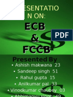 ecbfccbnew-090401113531-phpapp01[1]