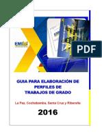 NUEVO FORMATO PERFIL-EMI.pdf