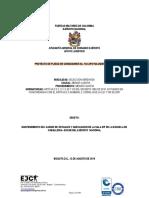 Proyecto de Pliego de Condiciones (3)