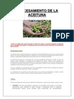 Procesamiento de Aceituna -Proyecto Hecho