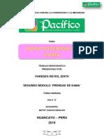 Monografia Ropa Interior Femenina Corregido