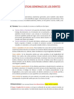 CARACTERISTICAS GENERALES DE LOS DIENTES