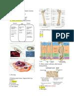 1. MDE BIOMEDIK 1 SPECTRIN.pdf