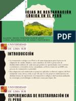 EXPO - EXPERIENCIAS DE RESTAURACIÓN ECOLÓGICA EN EL PERÚ.pptx