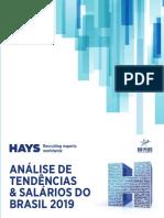 hays_2404583.pdf