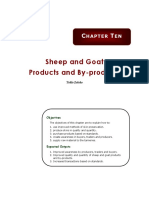 Sheep And Goat Production