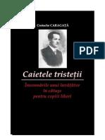 Caietele Tristetii Costache Caragata