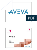 PML基础R1.pdf