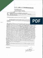 CONSTATACION DE PARQUEO VEHICULAR EN SJL