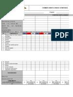 For-sgsst-12 Formato Inspección de Extintores