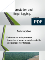 Deforestation And Illegal logging
