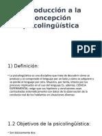 Concepción Psicolingüística