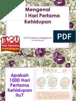 Mengenal 1000 Hari Pertama Kehidupan Ppt