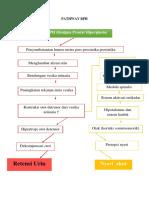 Pathway Benigna Prostat Hiperplasia Kasus 2