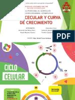 Microbiologia.. Ciclo Celular