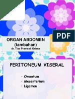 Organ Abdomen (Tambahan)