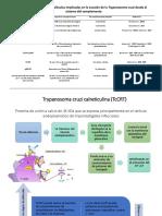 Inmunologia Clase 2 Parte 3