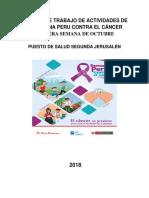Informe de Trabajo de Actividades de La Semana Peru Contra El Cáncer 2018