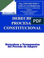 06 DPC ACCIÓN DE AMPARO.pptx