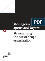 Strategyand Management Spans and Layers