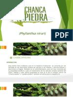 EXPORTACION DE PALTAS EN EL PERU.pptx