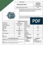 337239602-Ficha-Tecnica-Motor-Electrico.docx