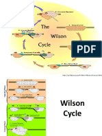 WILSON CYCLE 1.pptx