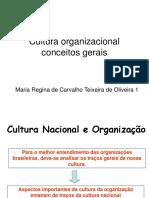 CM Cultura Organizacional Conceitos Gerais 1