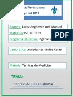 Proceso de Piña en Almíbar