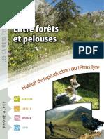 Entre Forêts Et Pelouses