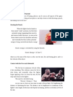 Fizika boksa