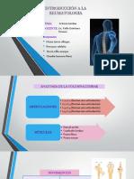 exposición lumbar.pptx