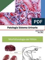 Copia de Patología Sistema Urinario (1).pptx