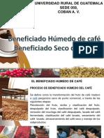Beneficiado Humedo y Seco de Cafe