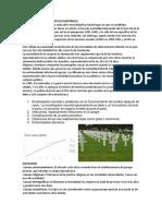 Causas de La Mortalidad en Guatemala