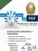 Estructura Organica y Funcional 1 (1)