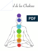 246413008-Manual-Chakras.pdf
