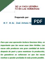 Celo y Hormonas