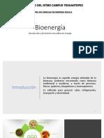 Bioenergía 1.3
