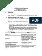 228.TDR_GTU_01 ASISTENTE DE PLATAFORMA.pdf