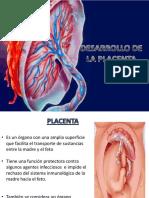 Desarrollo de La Placenta Obstetricia