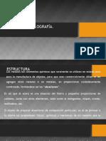 METALES- Clase 1.pptx_0