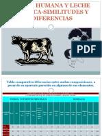 Leche Humana y Leche de Vaca Similitudes y Diferencias