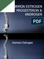 Estrogen Progesteron Androgen